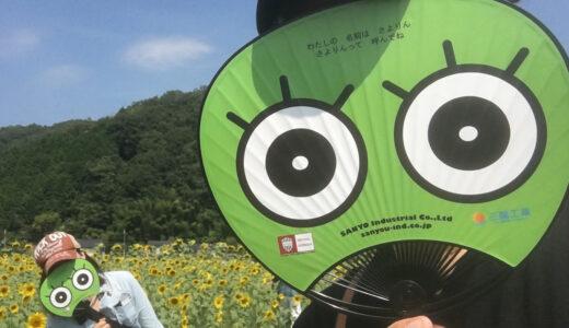 兵庫県佐用町の『南光ひまわり畑』へバイクツーリング!アクセス方法は?駐車場は?真夏のおすすめスポットを紹介