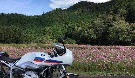 秋の丹波・篠山ツーリング!黒枝豆・清住コスモス畑を目指してバイクで走ってきた!