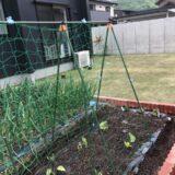 いつかは自宅の庭で家庭菜園を始めたい!ガーデンエースの花壇ブロックでおしゃれな菜園スペースをDIYで作ってみた