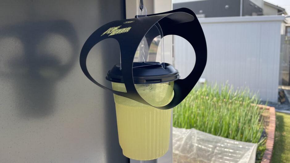 フマキラー「ハチ超激取れ」でハチ取りしてみた!ペットボトルよりも効果的にスズメバチ・アシナガバチなどの蜂を捕獲・駆除する方法をレビュー
