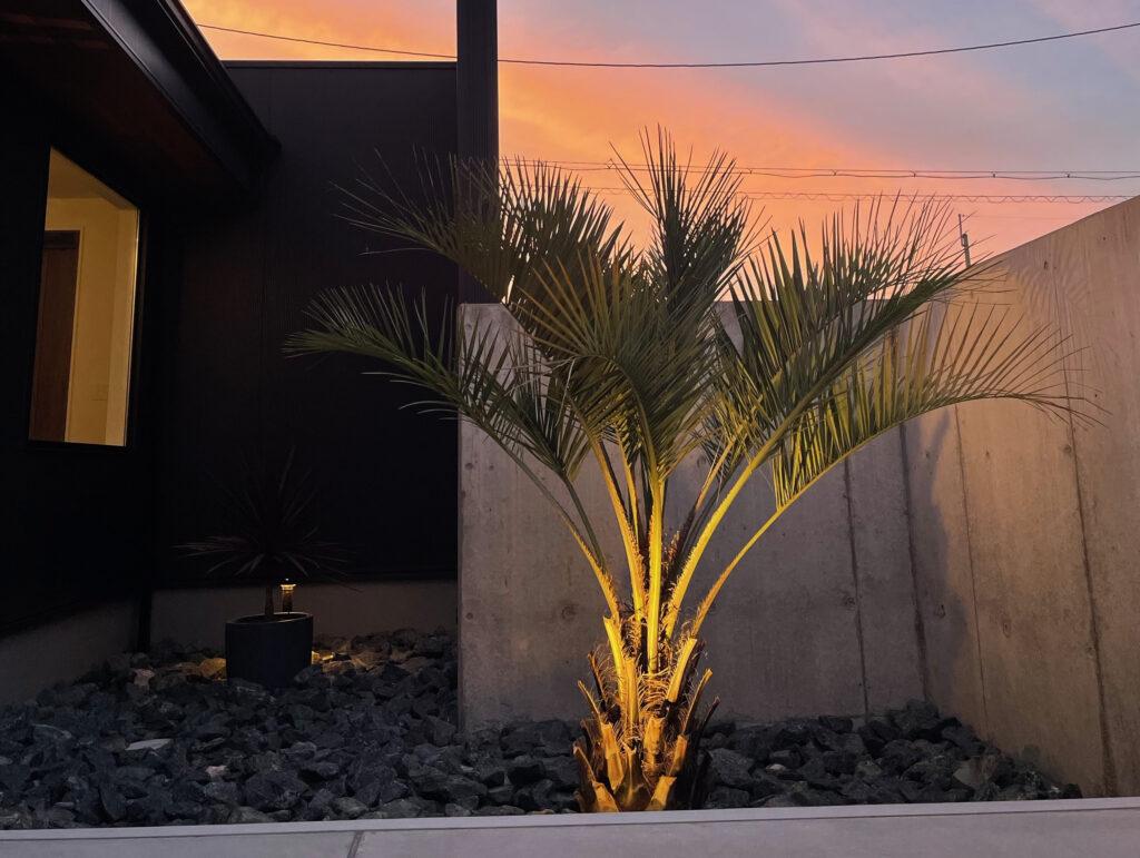 夕日に映えるヤシの木がオシャレ