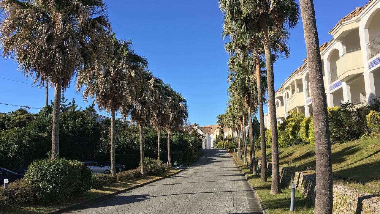 ホテルの玄関に続く道