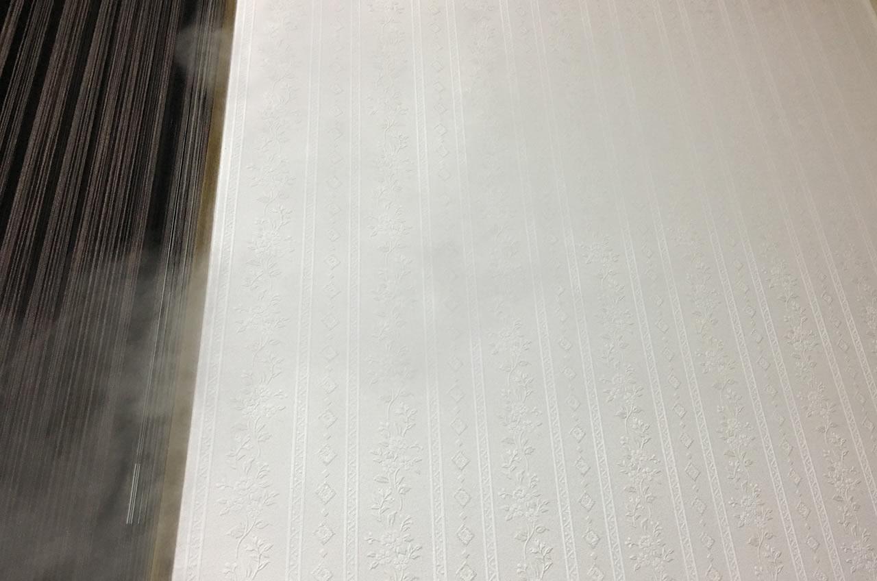 次亜塩素酸の蒸気は結構白い