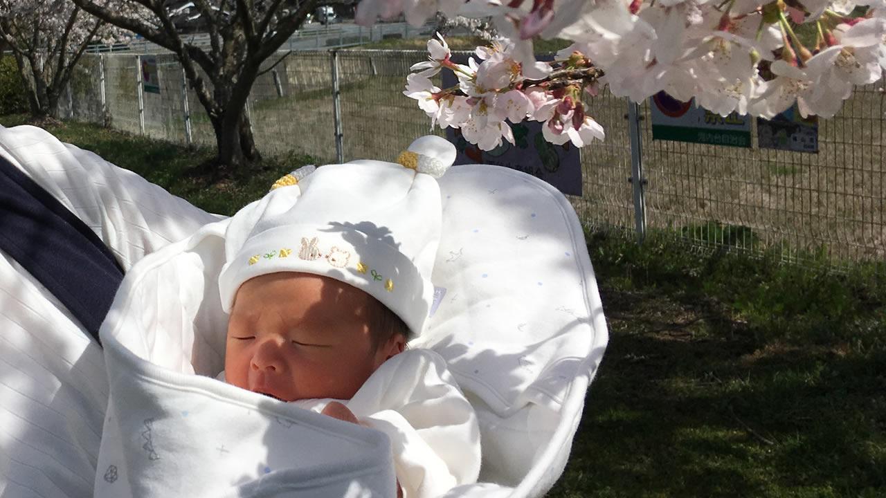 出生届を出してきた!赤ちゃんが産まれたら知っておきたい、退院後の手続きまとめ