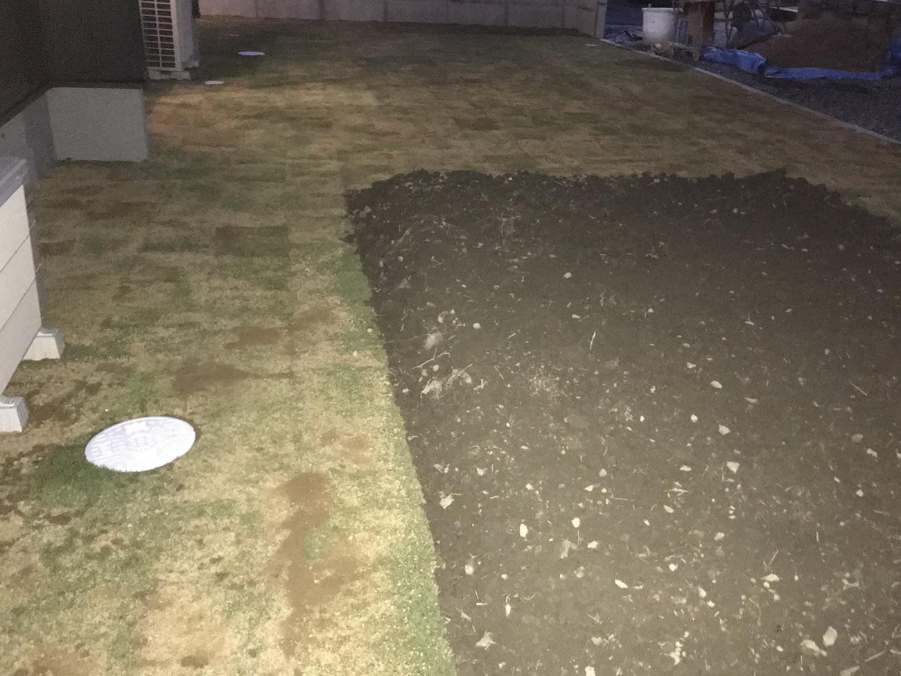 とりあえず芝生にしてみました