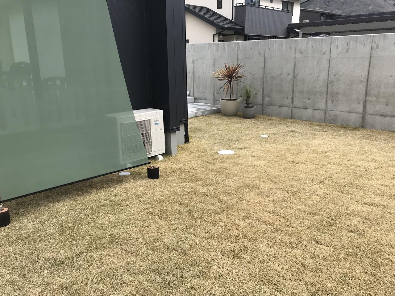 芝生に肥料を蒔いてみました