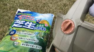 芝生の肥料を撒く時期は春がオススメ!誰でもできる3月から始める芝生の管理方法をスコッツ・電動ハンディースプレッダーWIZZを使って解説