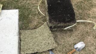 芝生が枯れたら張り替えがおすすめ!素人でも簡単にできる芝生の修復方法とは?