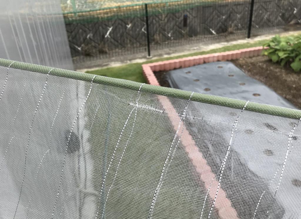 防虫ネットと支柱がセット