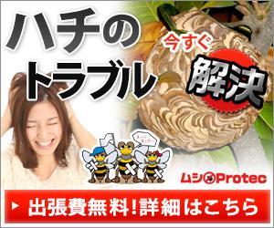 スズメバチの駆除は虫プロテック